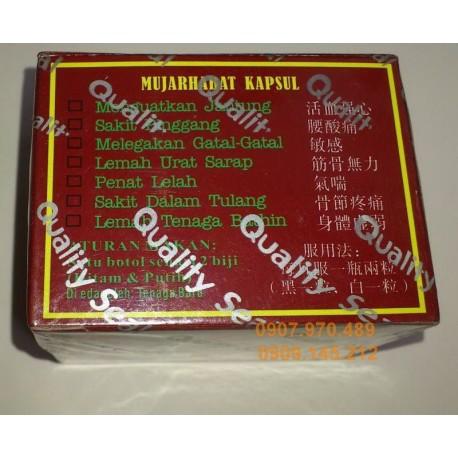 cong dung va lieu dung cùa Mujarhabat kapsul