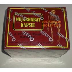 Thuốc Mujarhabat Kapsul chữa xương khớp hiệu quả